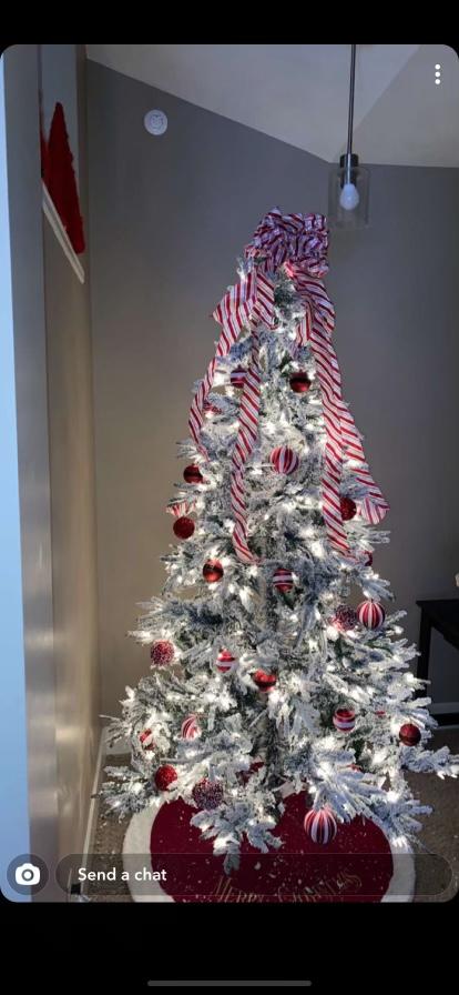 Hunter Richardsons Christmas tree.