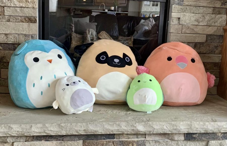 Emily Huffs owl, dog, flamingo, seal, and turtle Squishmallows.